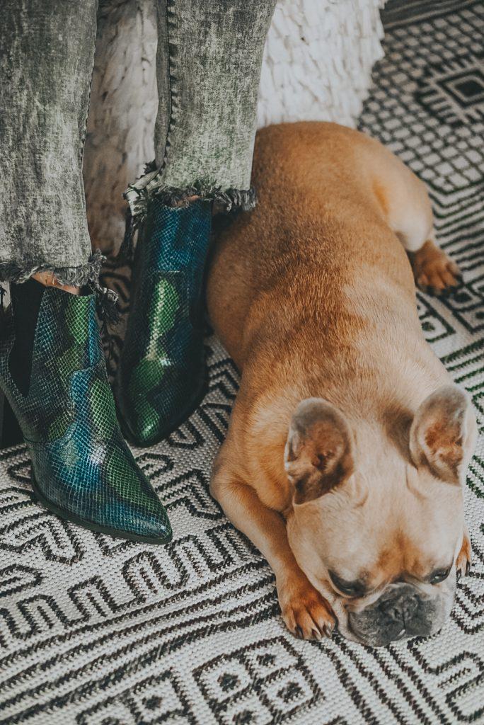 Blue snake print booties